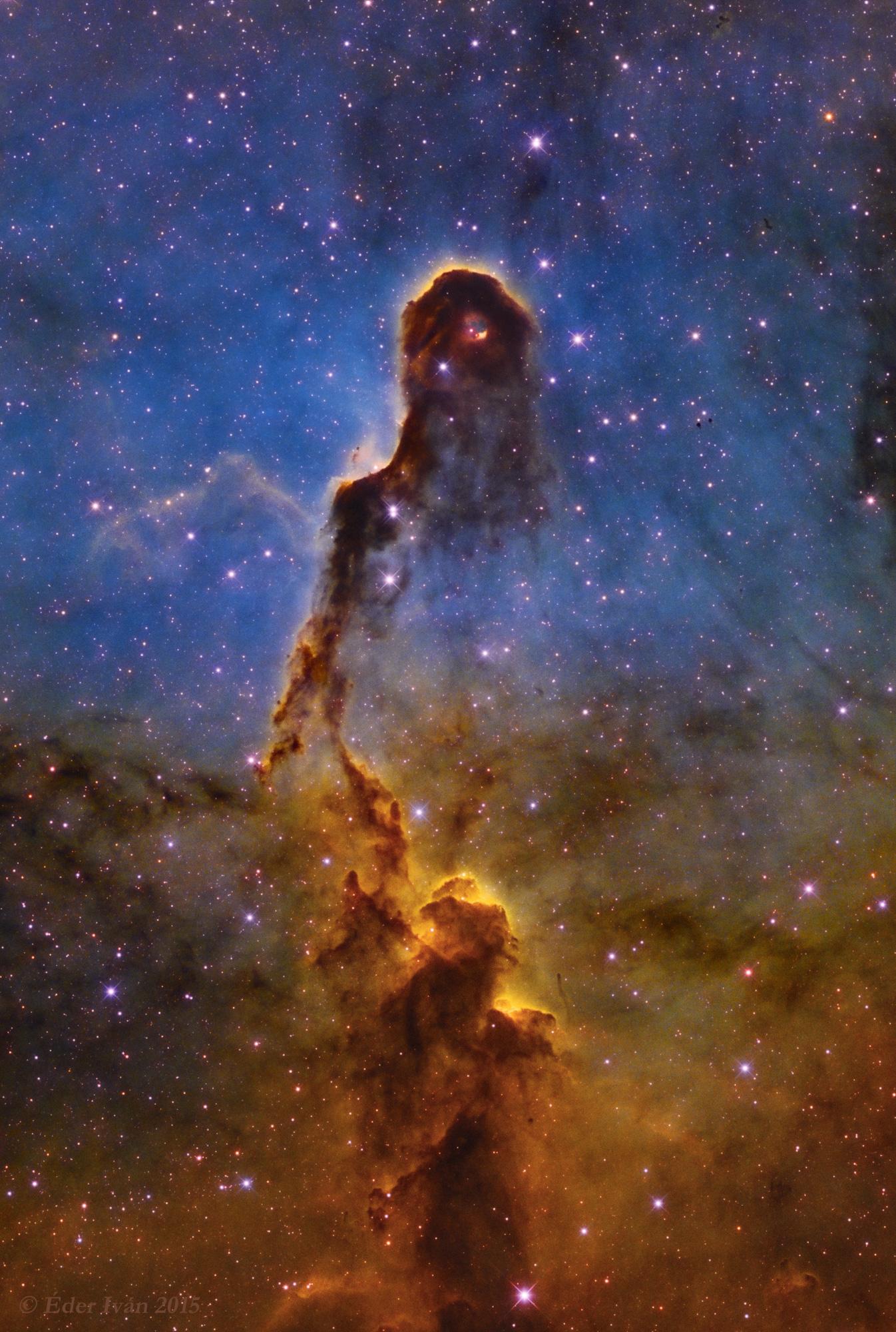 Az Elefántormány-köd (IC 1396A)