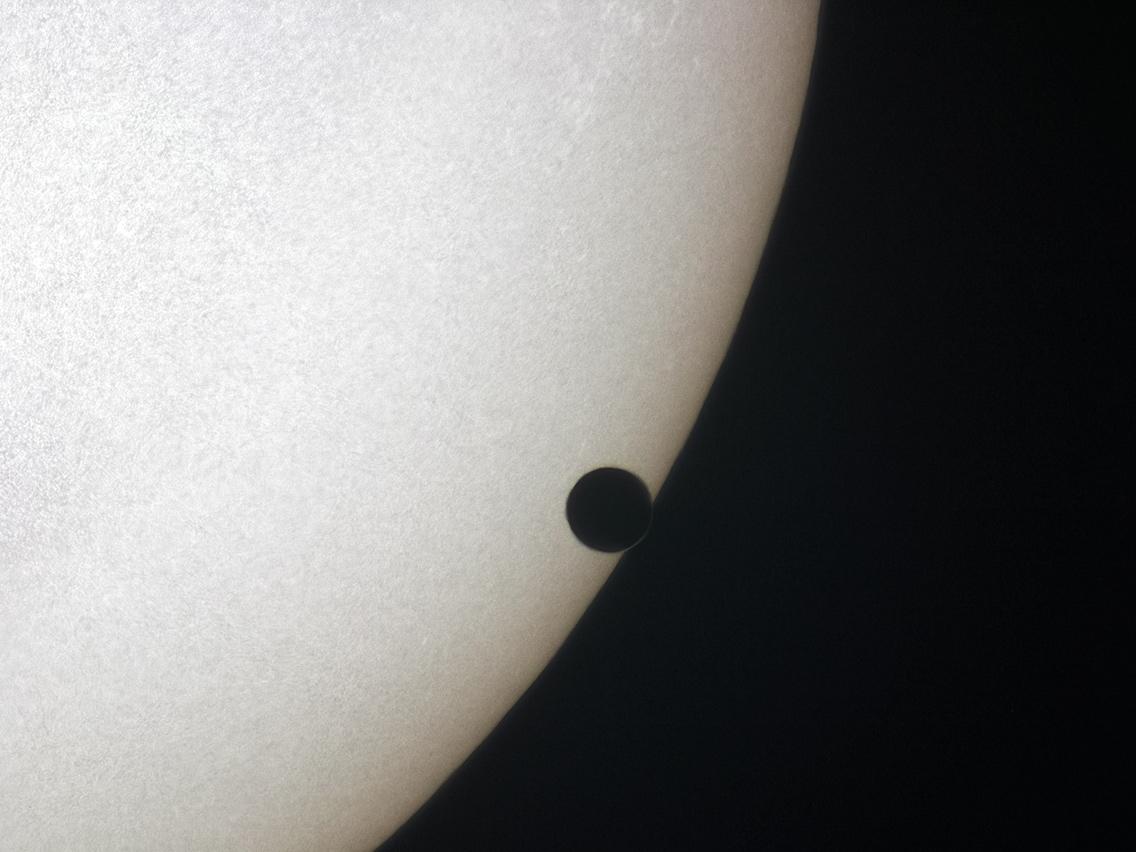 A Fekete Vénusz