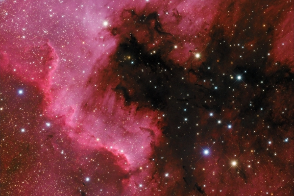 The North America Nebula - NGC 7000