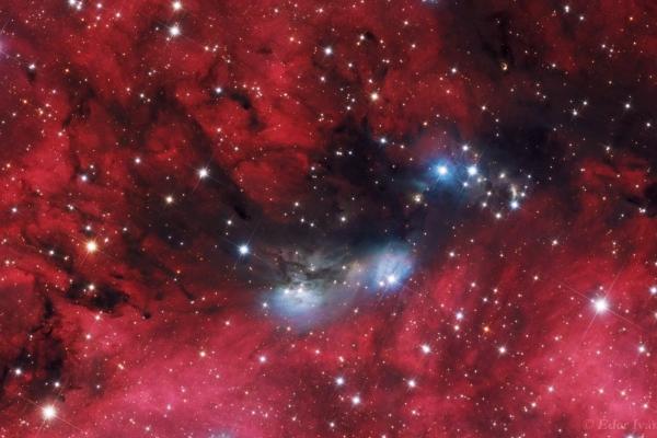 NGC 6914 bright Nebulae