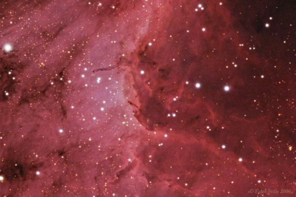 A Pelikán-köd (IC 5070)