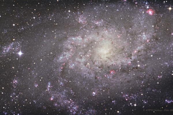 A Triangulum-galaxis (M33)