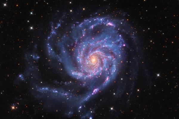 Pinwheel Galaxy (M 101)