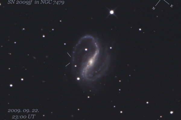 Outburst of SN 2009jf supernova in NGC 7479 galaxy