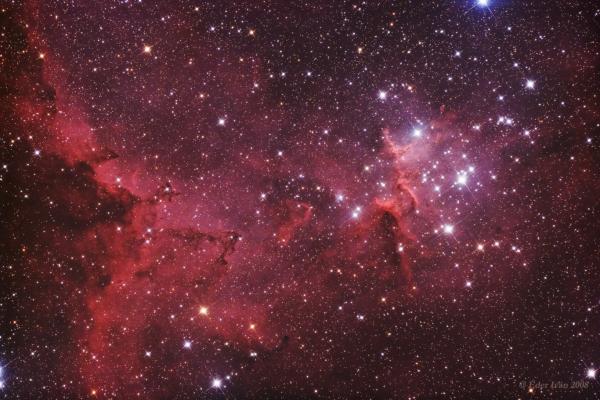 Center of the Heart Nebula (IC 1805)