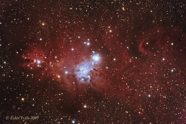 Christmas tree cluster region (NGC 2264)